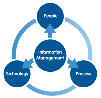 the world of information management professionals essay